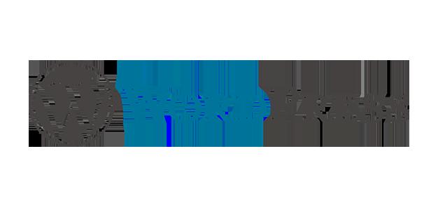 wordpress y WPO